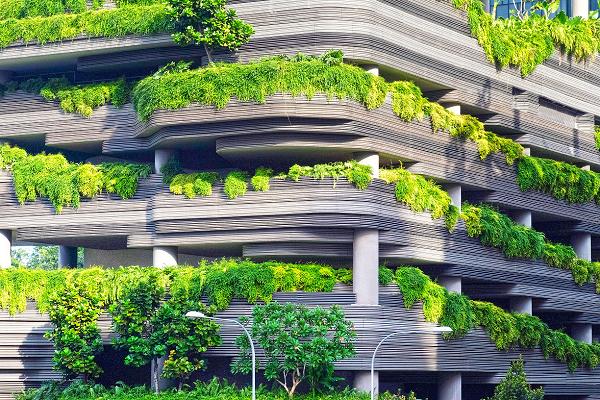 Ecological Responsibility